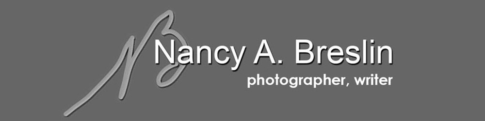 Nancy Breslin - photographer, writer (banner )